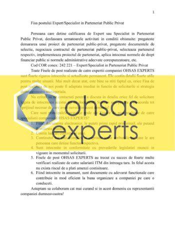 Instructiuni proprii Expert/Specialist in Parteneriat Public Privat