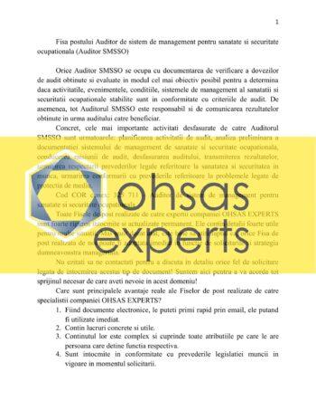 Fisa postului Auditor de sistem de management pentru sanatate si securitate ocupationala (Auditor SMSSO)