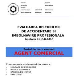 Evaluarea riscurilor de accidentare si imbolnavire profesionala Agent Comercial