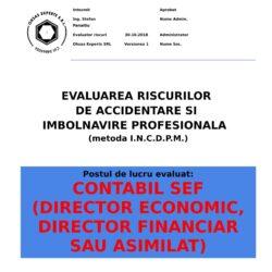 Evaluare riscuri SSM Contabil Sef (Director Economic, Director Financiar sau asimilat)
