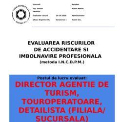 Evaluare riscuri SSM Director Agentie de Turism, Touroperatoare, Detailista (FilialaSucursala)