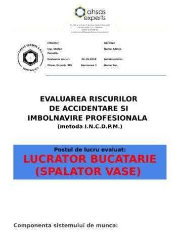 Evaluarea riscurilor de accidentare si imbolnavire profesionala Lucrator Bucatarie Spalator Vase