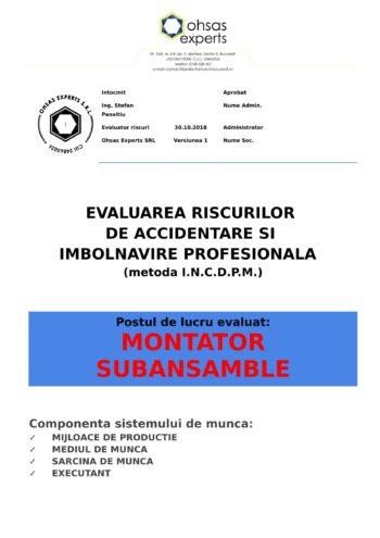 Evaluarea riscurilor de accidentare si imbolnavire profesionala Montator Subansamble