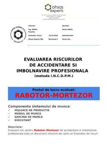 Evaluarea riscurilor de accidentare si imbolnavire profesionala Rabotor Mortezor