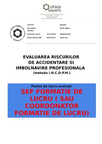 Evaluarea riscurilor de accidentare si imbolnavire profesionala Sef Formatie de Lucru sau Coordonator Formatie de Lucru