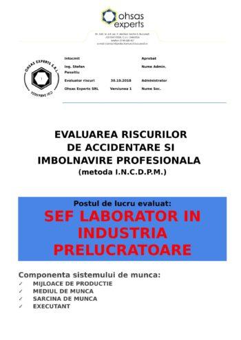Evaluarea riscurilor de accidentare si imbolnavire profesionala Sef Laborator in Industria Prelucratoare