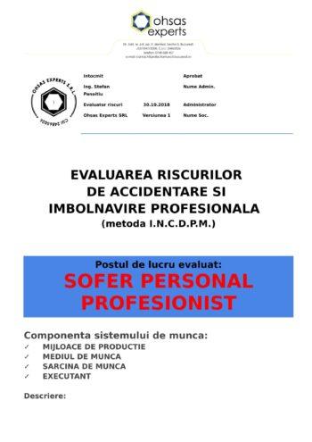 Evaluarea riscurilor de accidentare si imbolnavire profesionala Sofer Personal Profesionist