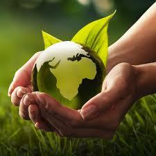 protectia mediului bucuresti